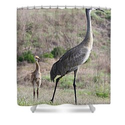 Standing Tall Shower Curtain by Carol Groenen