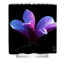 Steel Magnolia Shower Curtain
