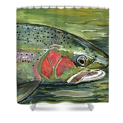 Steelhead  Shower Curtain