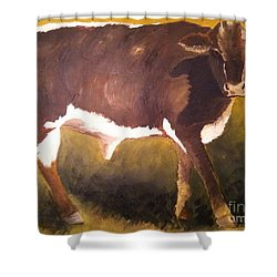Steer Calf Shower Curtain