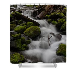 Stepping Stones Shower Curtain by Mike Reid