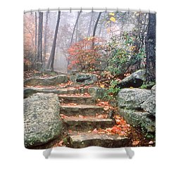 Steps Cloudland Canyon Shower Curtain