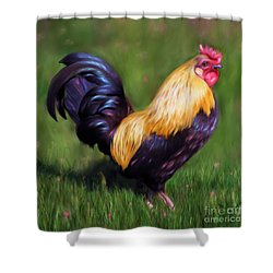 Stewart The Bantam Rooster Shower Curtain by Michelle Wrighton