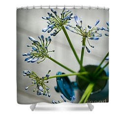 Still Life 01 Shower Curtain by Nailia Schwarz