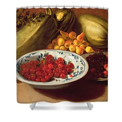 Still Life Of Cherries - Marrows And Pears Shower Curtain by Italian School