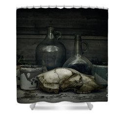 Still Life With Bear Skull Shower Curtain by Priska Wettstein