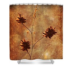 Still Standing Shower Curtain by Alyce Taylor