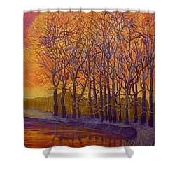 Still Waters Shower Curtain by Jeanette Jarmon