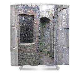 Stone Archwork Shower Curtain