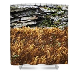 Stone Wall And Fern Shower Curtain