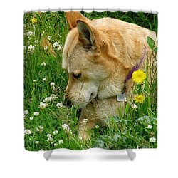 Stop And Smell The Clover Shower Curtain