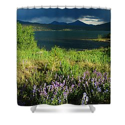 Storm In Dillon Shower Curtain by Lynn Bauer