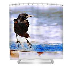Stowaway On The Ferry Shower Curtain by Judi Bagwell