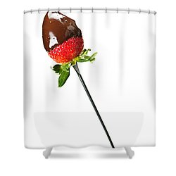 Strawberry Dipped In Chocolate Shower Curtain by Elena Elisseeva