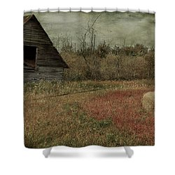 Strawberry Lane  Shower Curtain by Jerry Cordeiro