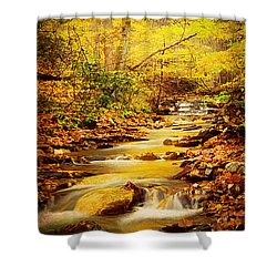 Streams Of Gold Shower Curtain by Darren Fisher