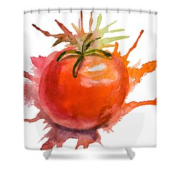 Stylized Illustration Of Tomato Shower Curtain