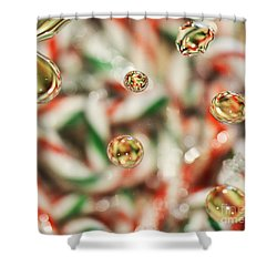 Sugar On Canes Shower Curtain