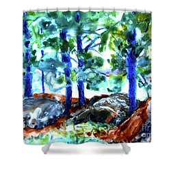 Summer By The Lake Shower Curtain by Jan Bennicoff