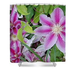 Summer Clematis Shower Curtain