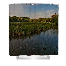 Summer Duck Pond Shower Curtain by Jiayin Ma