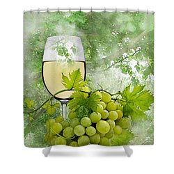 Summer Evening Shower Curtain by Manfred Lutzius