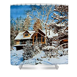 Shower Curtain featuring the painting Summer House Portrait In Winter by Hanne Lore Koehler
