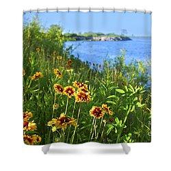 Summer In Toronto Park Shower Curtain by Elena Elisseeva
