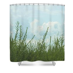 Summer In Watercolor Shower Curtain by Ellie Teramoto