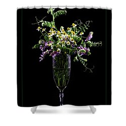 Summer Memories Shower Curtain by Ivelina G
