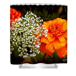 Shower Curtain featuring the photograph Summer by Milena Ilieva