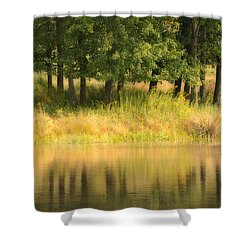 Summer Reflections Shower Curtain by Karol Livote