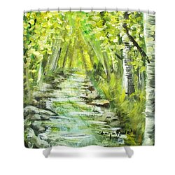 Shower Curtain featuring the painting Summer by Shana Rowe Jackson