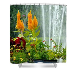 Summer Spray Shower Curtain by Michelle Joseph-Long