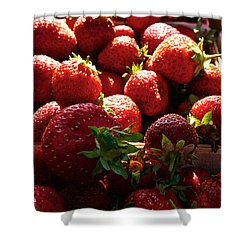 Sun Ripened Shower Curtain by Susan Herber