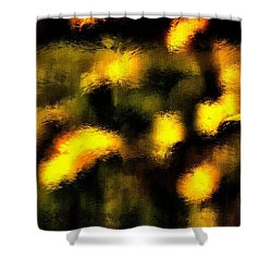 Sun Worshiper Shower Curtain by Terence Morrissey