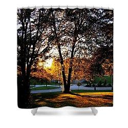 Sundown In Stanley Park Shower Curtain by Will Borden