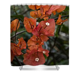 Shower Curtain featuring the photograph Sundown Orange by Steven Sparks