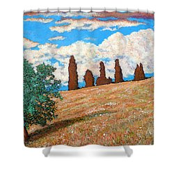 Shower Curtain featuring the painting Sundown by Tom Roderick