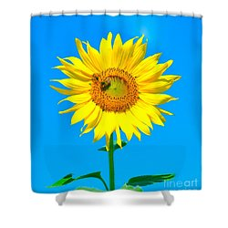 Sunflower And Bee Shower Curtain by Debbi Granruth