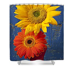 Sunflower And Mum Shower Curtain by Garry Gay