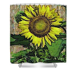 Sunflower Face Shower Curtain by Alec Drake