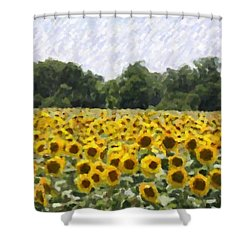 Shower Curtain featuring the photograph Sunflower Field by Donna  Smith