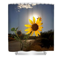 Sunflower Shower Curtain by Mistys DesertSerenity