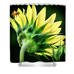 Shower Curtain featuring the photograph Sunflower With Bee by Lynne Jenkins