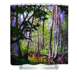 Sunlight In The Swamp Shower Curtain by Judi Bagwell