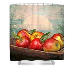 Sunlight Shower Curtain by Manfred Lutzius