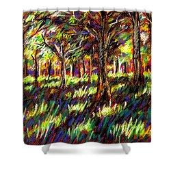 Sunlight Through The Trees Shower Curtain by John  Nolan