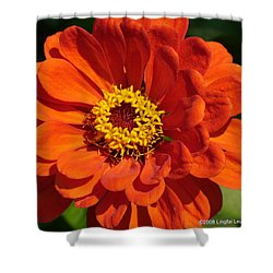 Shower Curtain featuring the photograph Sunny Delight by Lingfai Leung