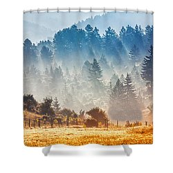 Sunny Morning Shower Curtain by Evgeni Dinev